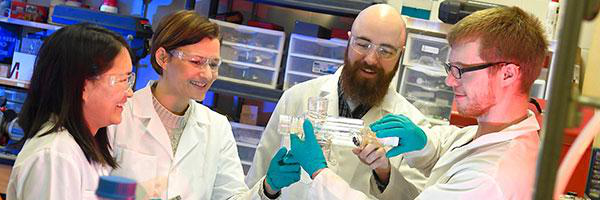 Clarkson graduate students perform research in Prof. Selma Mededovic's lab